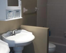 Bathroom Demo & Remodel