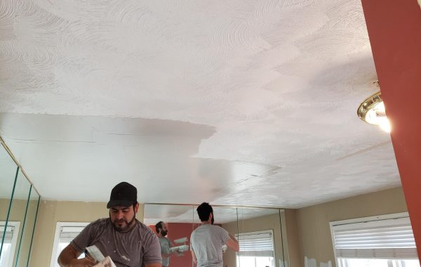 Textured Ceiling Removal Bolingbrook
