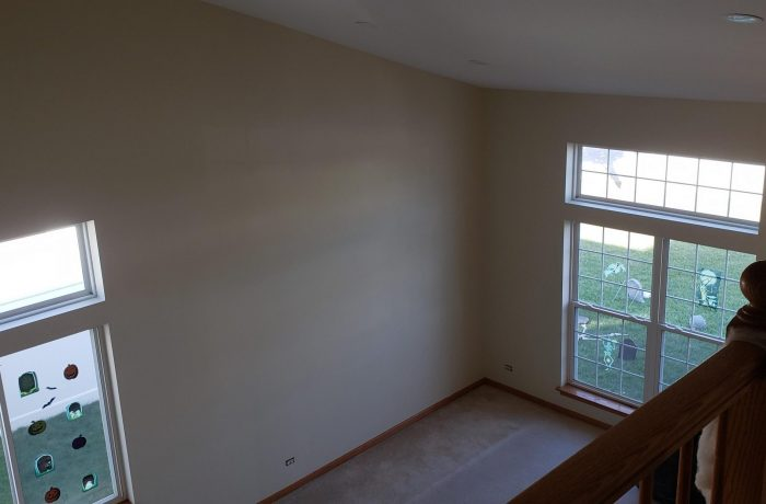 Plainfield Vaulted Ceiling & Wall Repair